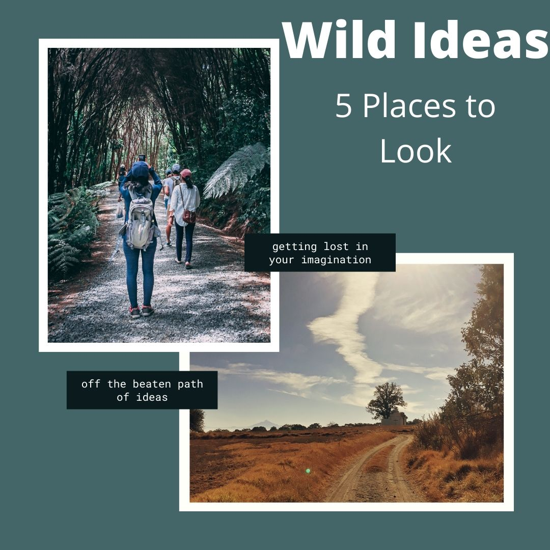 Wild Ideas: 5 Places to Look